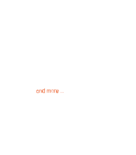 transport text - Transportas